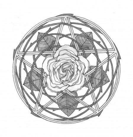 rose600